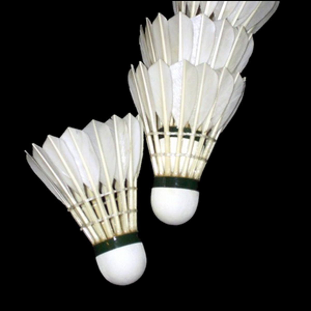 Multiple badminton shuttlecocks with feathers.