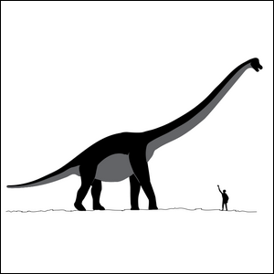 An illustration comparing the height of a Sauroposeidon to the height of a human.