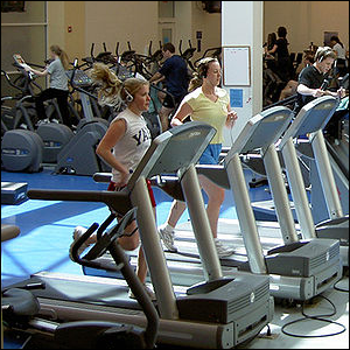 """The Adrian C. """"Ace"""" Israel Fitness room at Yale University in the Payne Whitney Gym."""