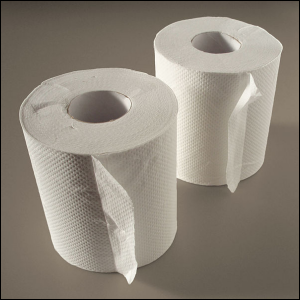 Two loose rolls of plain white toilet paper.