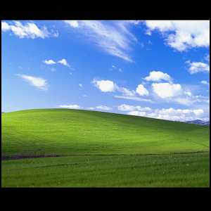 The iconic Bliss wallpaper from Windows XP.
