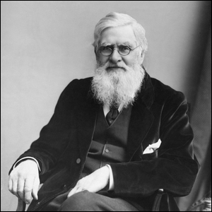 An 1895 photo of Alfred Russel Wallace.
