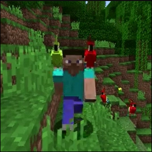 A Minecraft character with a parrot on each shoulder.