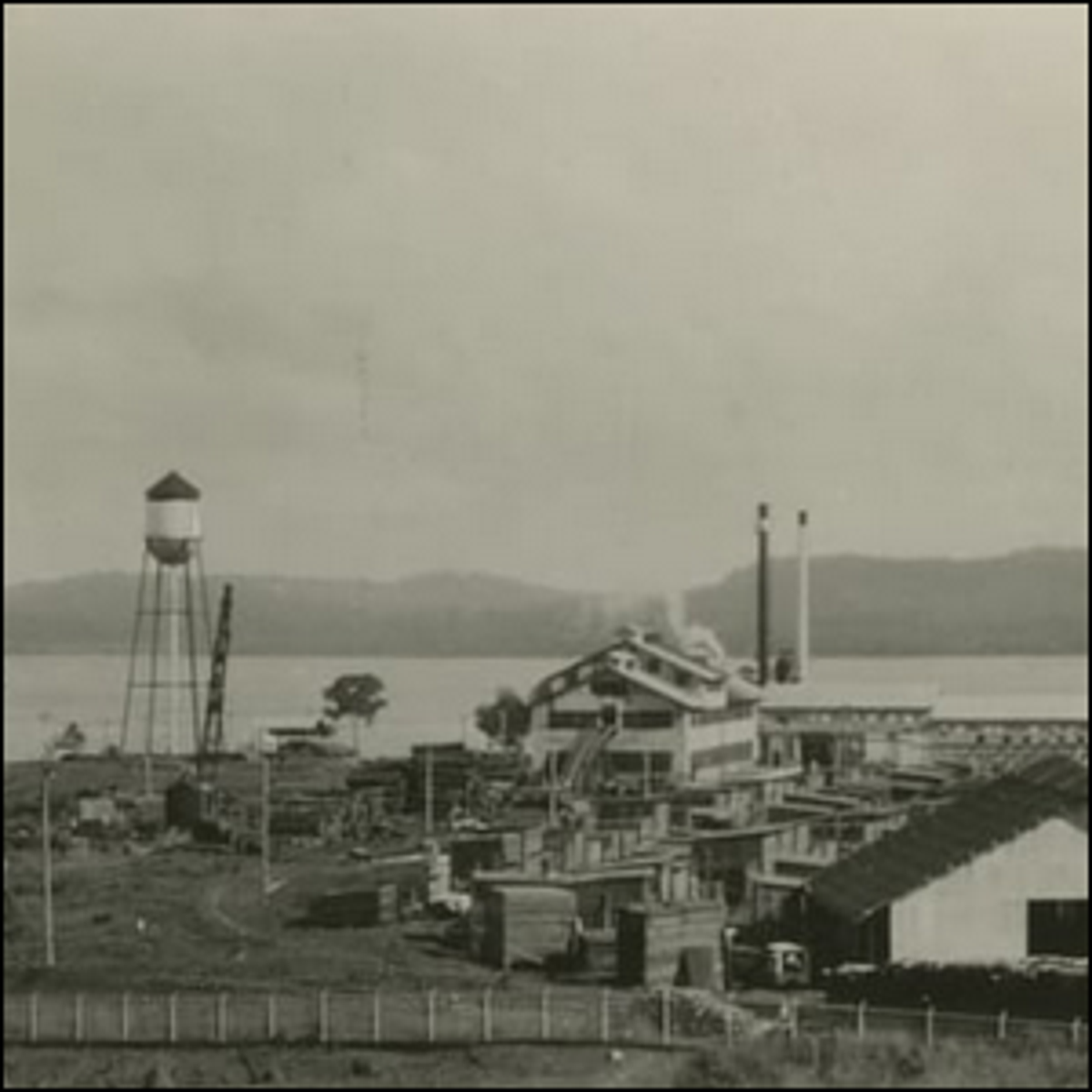 A photo of the small city of Fordlandia after it was built.