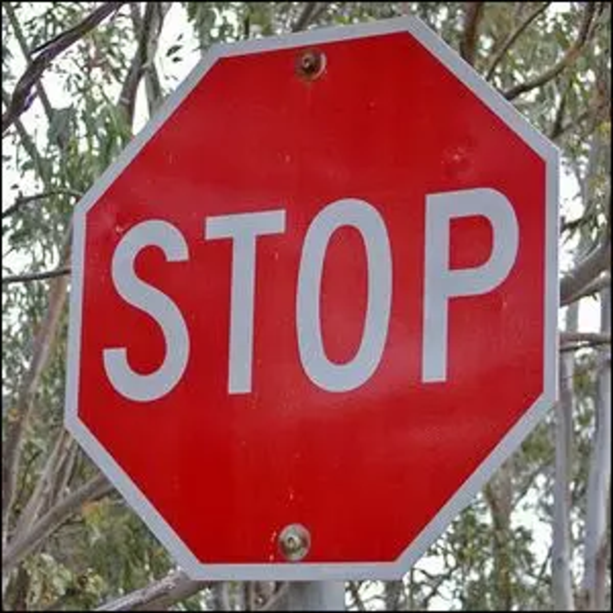 An Australian stop sign, identical to the ones found in the U.S.