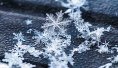 Is It True That No Two Snowflakes Are Alike?