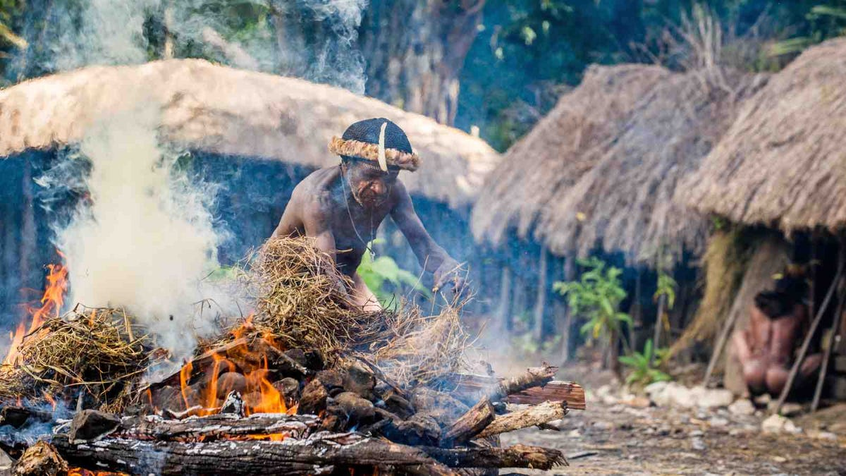 Unidentified man of Dugum Dani tribe cooks food and uses an earth oven method of cooking pig