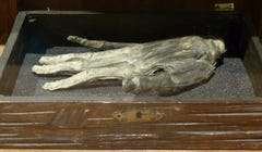 The Strange and Spooky Folklore of the Hand of Glory