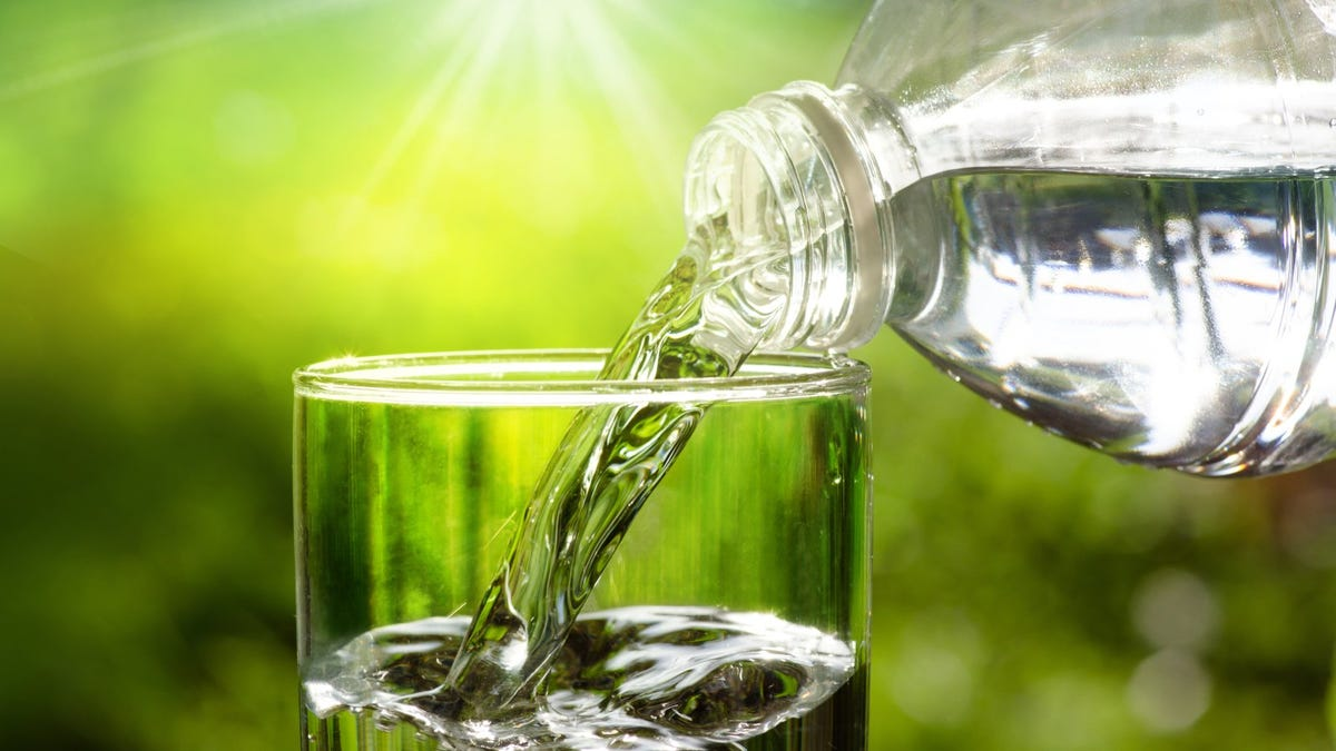 pouring water from bottle into glass against sunlit green background