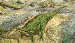 First Complete Dino Skeleton Ever Found Finally Gets Respect