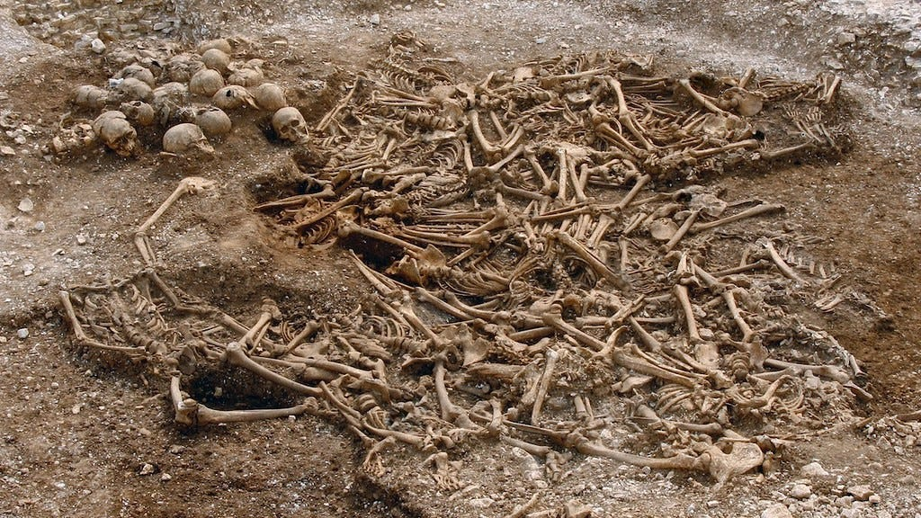 Many unearthed bones lying on the ground