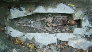 DNA Sequencing Provides Window on Viking Life