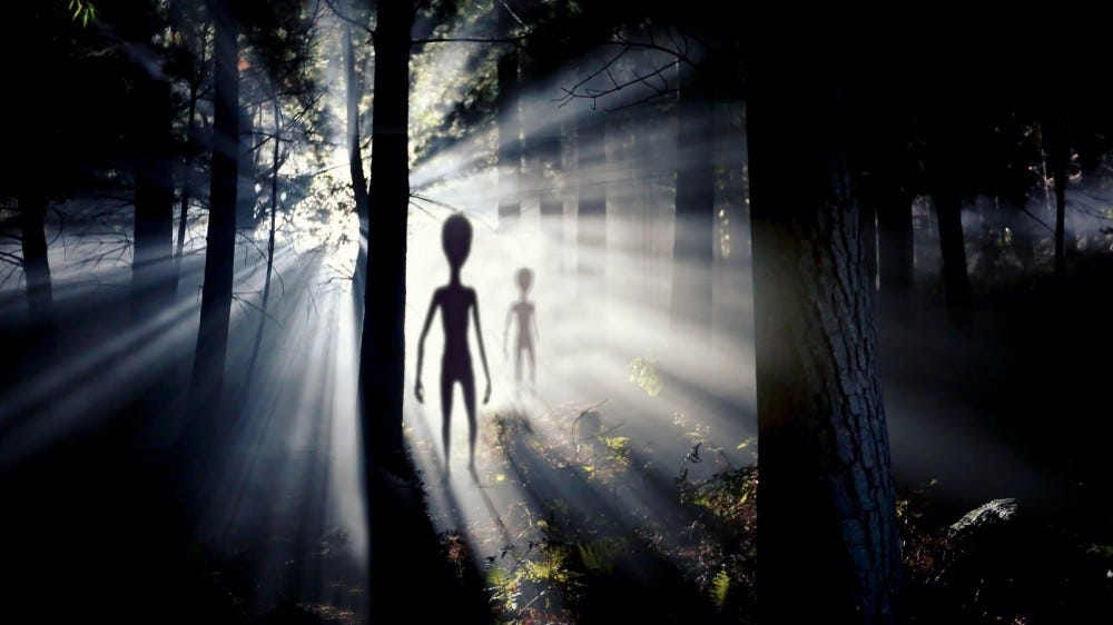 blurred aliens figure and light of an UFO spaceship landing in the forest
