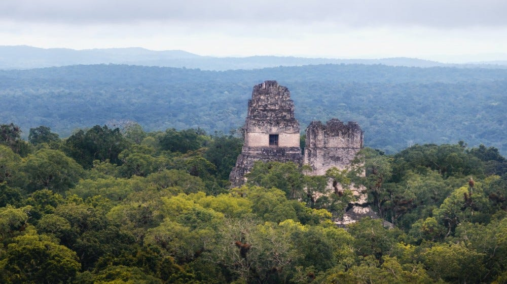 Top of mayan temples at Tikal National Park, Guatemala