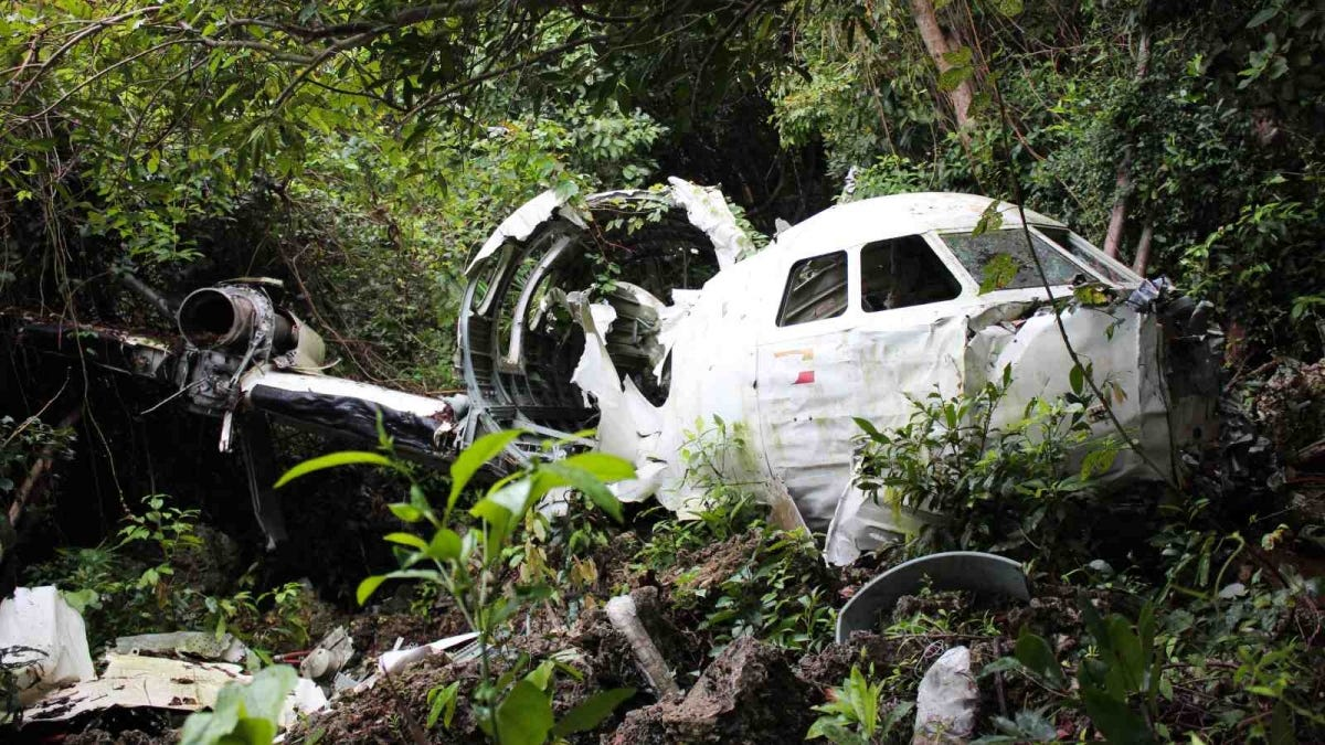 Airplane Wreck in Jungle