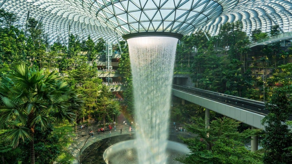 rainfall water structure surrounded by lush plants in Jewel Complex at the Changi Airport, Singapore