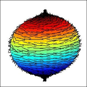 A graphic representation of a failed attempt to comb a hairy ball flat.